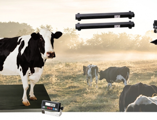 Products Engineering Corporation (PEC) Introduces New Product Line – Livestock/Vet Scales and Weigh Bars